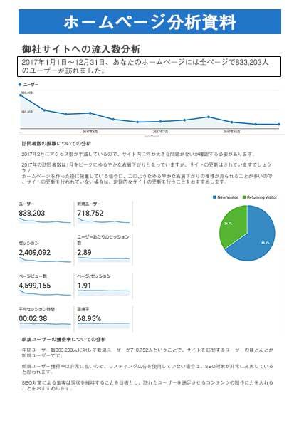 ホームページ分析資料、解析コメント